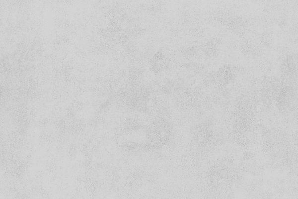 pegasus-080-st82o